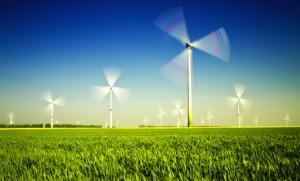 Viele Windkrafträder in Arbeit