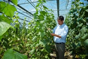 Artikelegebend sind Kontrollen von Bio-Lebensmitteln.