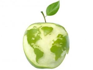 Inhalt des Artikels sind die Arbeitsbedingungen für Bioprodukte.