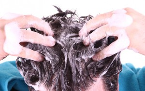 Der Artikel berichtet über Bio-Haarpflegeprodukte.