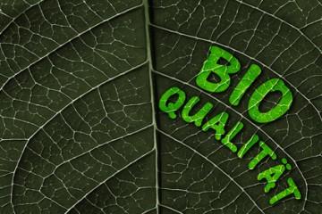 Der Artikel berichtet über Bioprodukte und deren Kennzeichnungen.