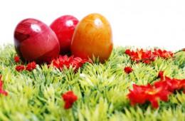 Artikelbend ist die Herausforderung der Produzenten von Bio-Ostereiern.