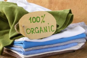 Inhalt des Artikels ist biologische Kleidung für Kinder.