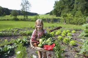 Mädchen im Garten hält Gemüse